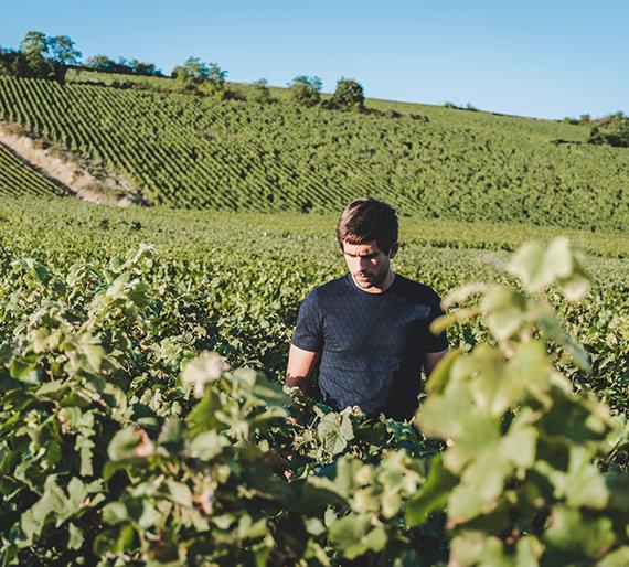 Jean-Rémi Drémont dans les vignes à Crouttes sur Marne. Champagne Drémont Marroy